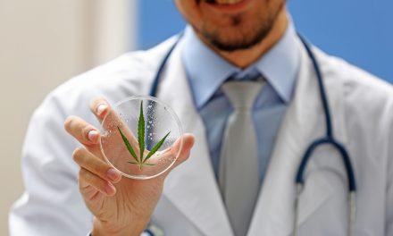 Cannabis legale, a chi è consigliabile affidarsi?